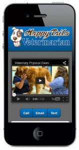 Video Presentation Style Mobile Website